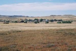 Arvada Landscape