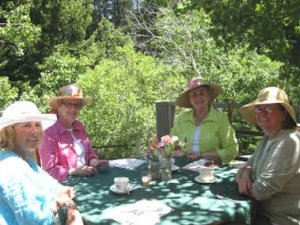 Story Garden Club